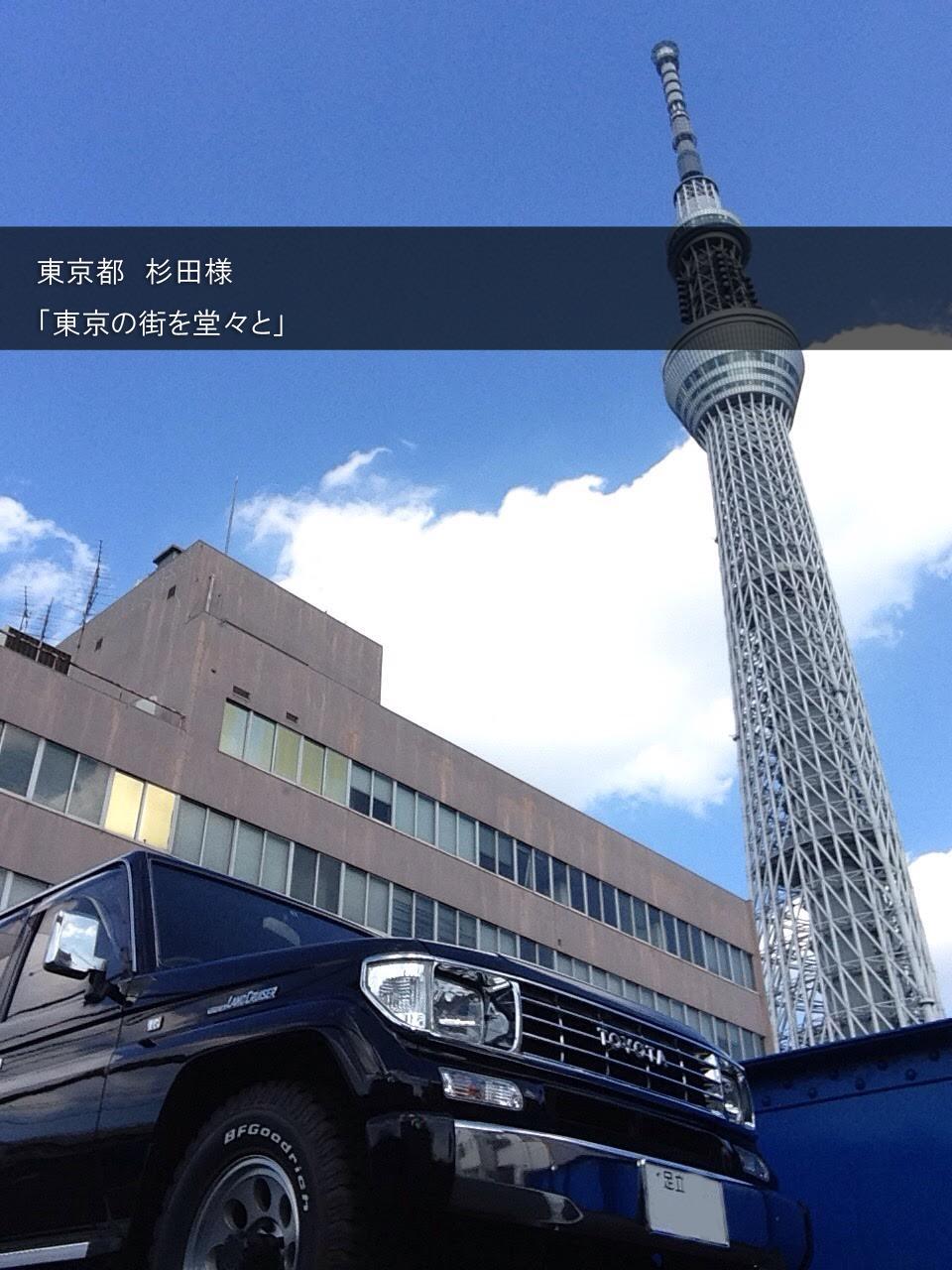 diesel-owner-sugitasama